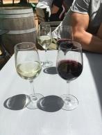 Gläser Wein