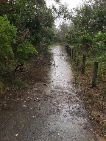 Wege unter Wasser