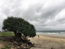 Strand in Byron Bay