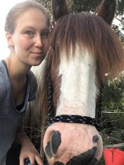 Selfie mit Pferd