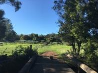 Farm in NSW