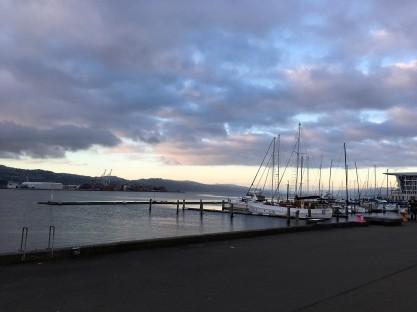 Hafen in Wellington