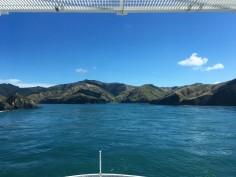 Blick von der Fähre auf die Südinsel, NZ